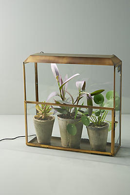 Slide View: 1: Modern Sprout Growhouse Set
