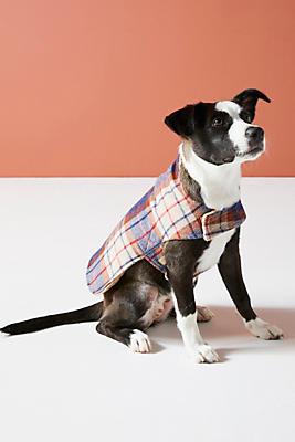 Slide View: 1: Porter Plaid Dog Coat