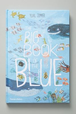 The Big Book Of The Blue by Anthropologie