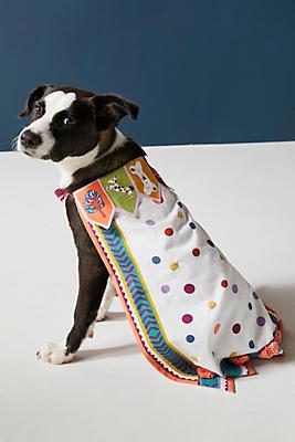 Slide View: 1: Dress-Up Pup Cape