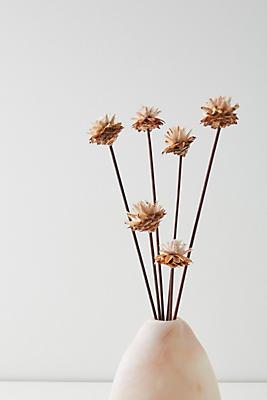 Slide View: 1: Dried Plumosum Bouquet