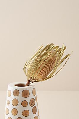 Slide View: 1: Dried Banksia Flower Stem