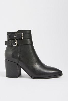 383e8c0885cb Steve Madden - New Shoes   Accessories
