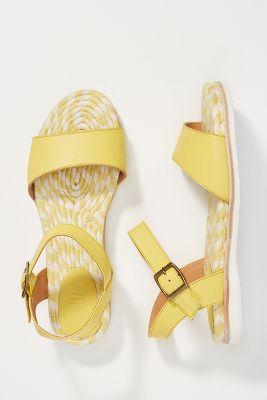 2f26e1fdc13 Birkenstock Arizona EVA Sandals