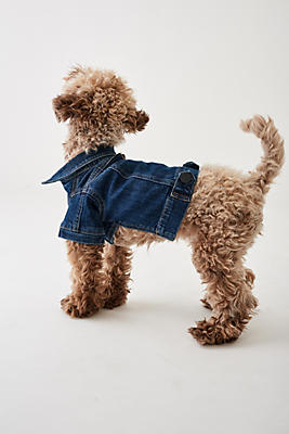 Slide View: 1: DL1961 Fido Canine Trucker Jacket