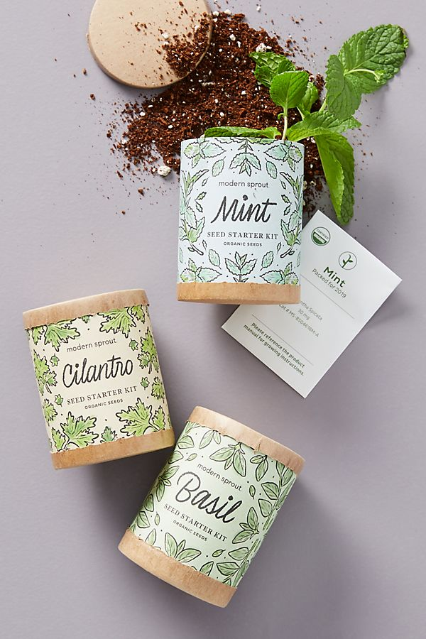 Slide View: 1: Modern Sprout Seed Starter Kit