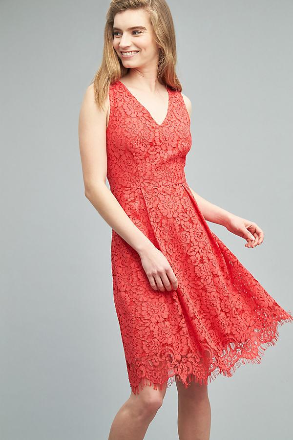 Nebraska Lace Dress, Pink - Pink, Size 14