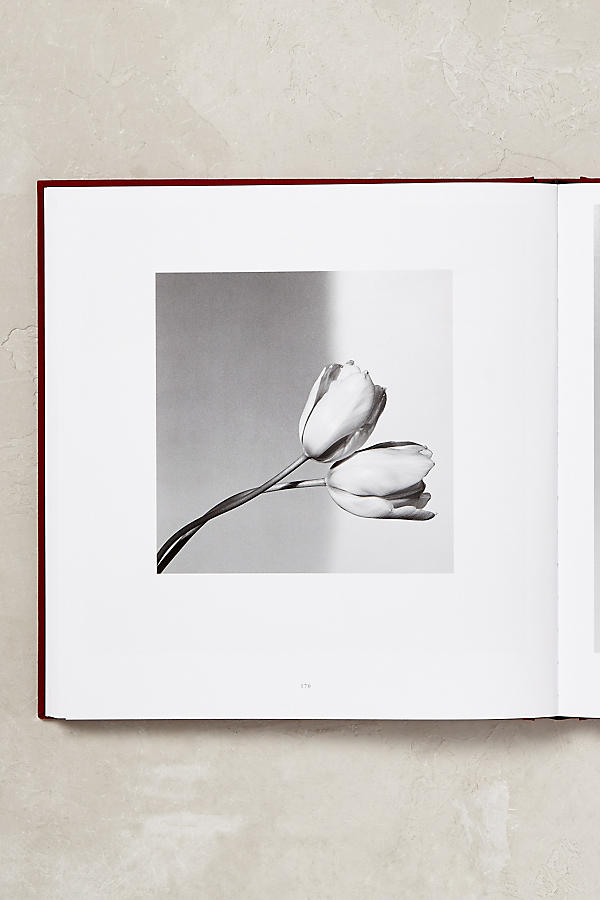 Slide View: 2: Mapplethorpe Flora: The Complete Flowers