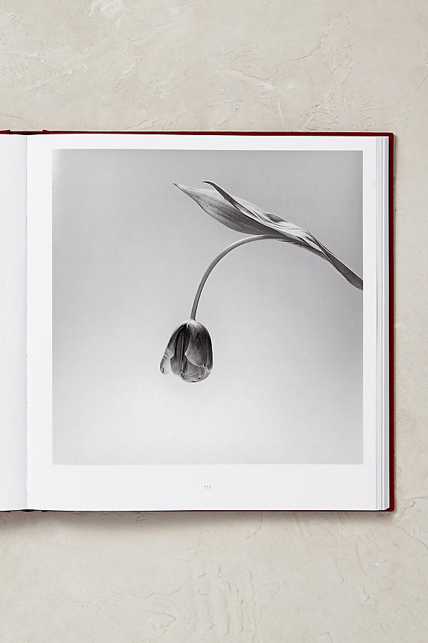 Slide View: 3: Mapplethorpe Flora: The Complete Flowers
