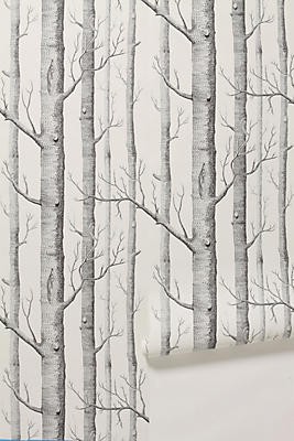 Papier Peint Woods Anthropologie French Canada