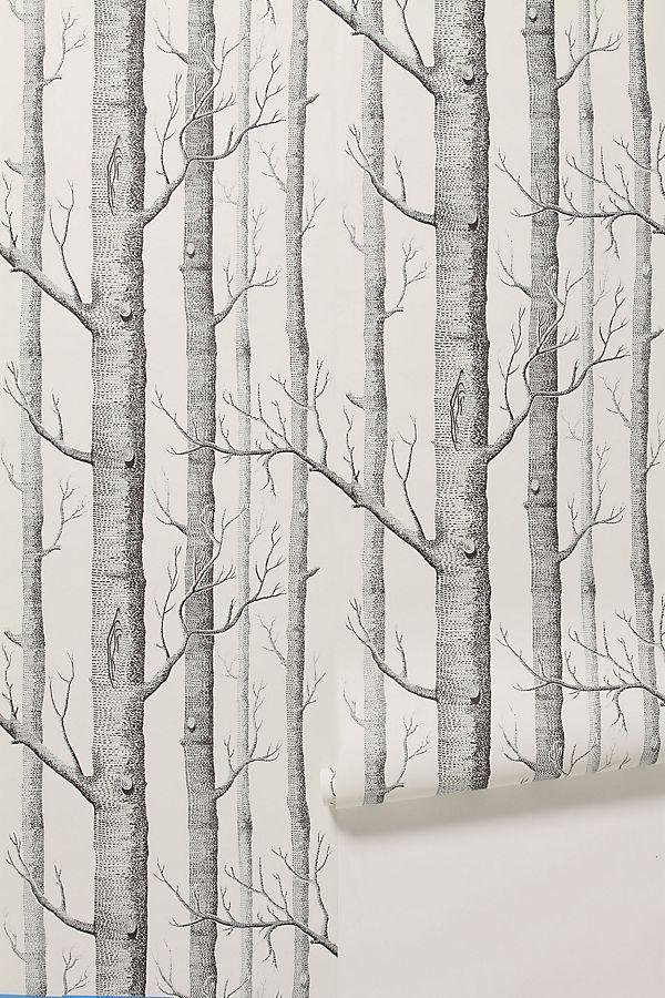 Slide View 1 Woods Wallpaper